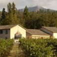 New Wine and Food Tour on July 14th benefits the Applegate Food Pantry...