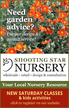 Click here for Shooting Star's Website!