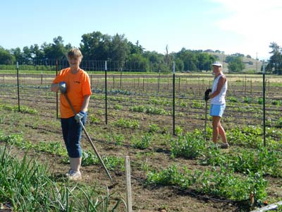Access FoodShare Garden