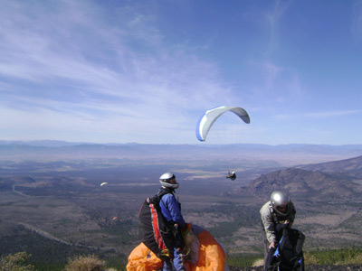 Rat Race Paragliding Competition