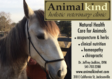 Click for Animalkind Vet Clinic website!